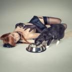 foxy_la_scar-7886